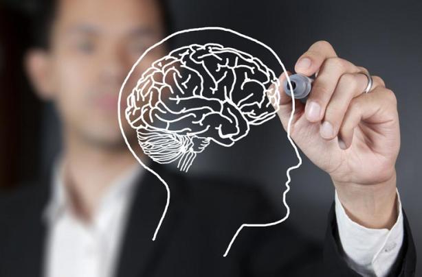 train-your-brain-creative